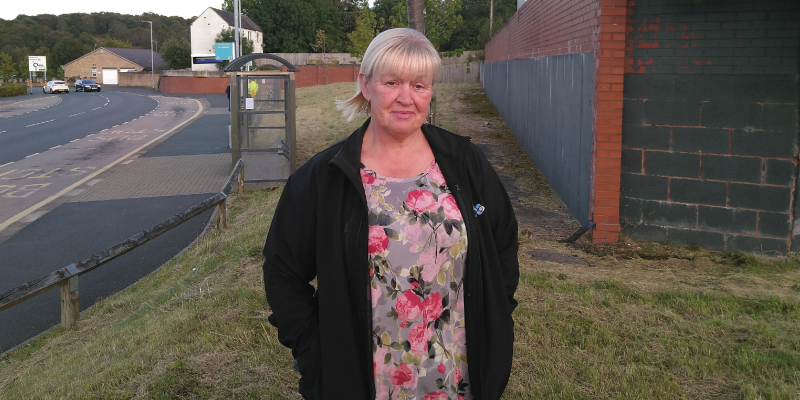 Hednesford councillors appeal for green space inspiration